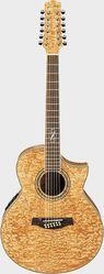 Гитара 12 струнная