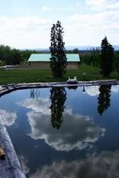 Санэкс  для больших прудов и малых озер.