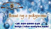 Новогодний отдых на базе отдыха в Полтавской области