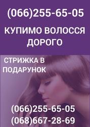 Покупка волосся у Полтаві Продати волосся Полтава дорого