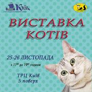 КЛК «Sofi» м. Полтава. Запрошує,  Вас,  на виставку котів