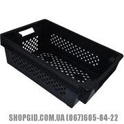 Пластиковые контейнеры пищевые купить в Полтаве shopgid com ua