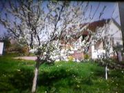 дом в никольском 8 км от Полтавы