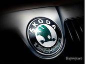 Продам запчасти на Skoda Oktavia !